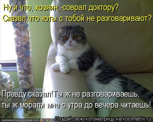 Котоматрица: Сказал,что коты с тобой не разговаривают? Правду сказал!Ты ж не разговариваешь, ты ж морали мне с утра до вечера читаешь! Ну и что, хозяин,-сов