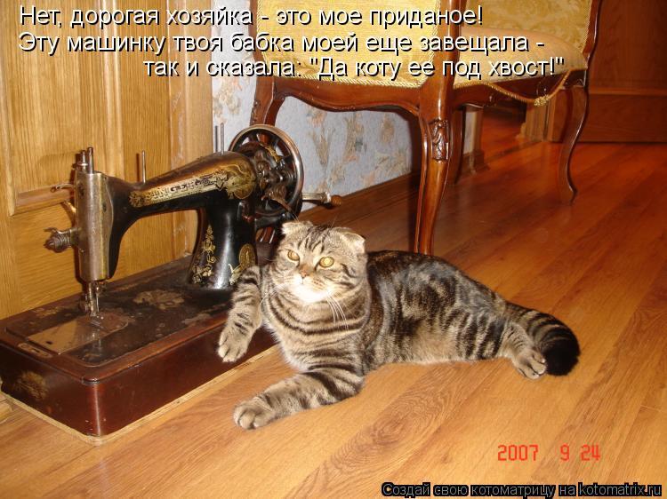 """Котоматрица: Нет, дорогая хозяйка - это мое приданое! Эту машинку твоя бабка моей еще завещала -  так и сказала: """"Да коту ее под хвост!"""""""