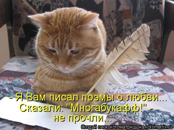 """Котоматрица: - Я Вам писал поэмы о любви... Сказали: """"Многабукафф!"""" -  не прочли..."""