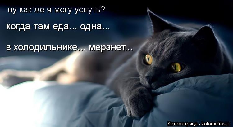 Котоматрица: ну как же я могу уснуть? когда там еда... одна...  в холодильнике... мерзнет...