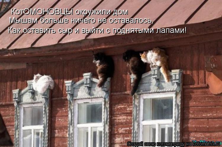 Котоматрица: КотОМОНОВЦЫ окружили дом Мышам больше ничего не оставалось,  Как оставить сыр и выйти с поднятыми лапами!