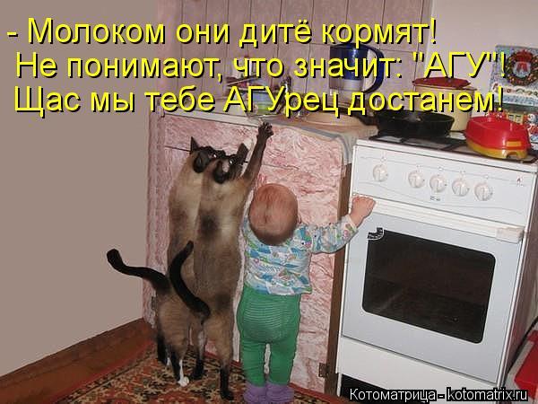 """Котоматрица: - Молоком они дитё кормят! Не понимают, что значит: """"АГУ""""! Щас мы тебе АГУрец достанем!"""