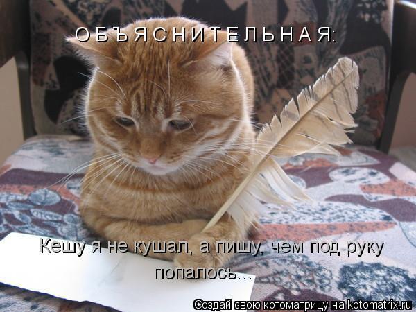 Котоматрица: О Б Ъ Я С Н И Т Е Л Ь Н А Я: Кешу я не кушал, а пишу, чем под руку попалось...