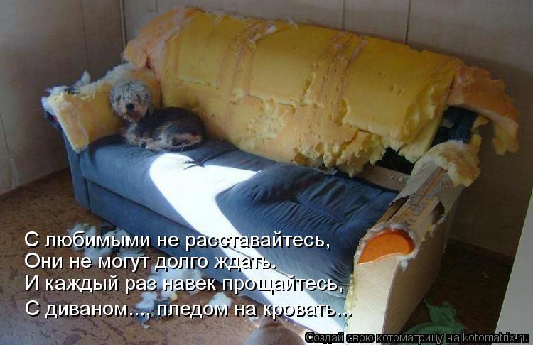 Котоматрица: С любимыми не расставайтесь,  Они не могут долго ждать. И каждый раз навек прощайтесь, С диваном..., пледом на кровать...