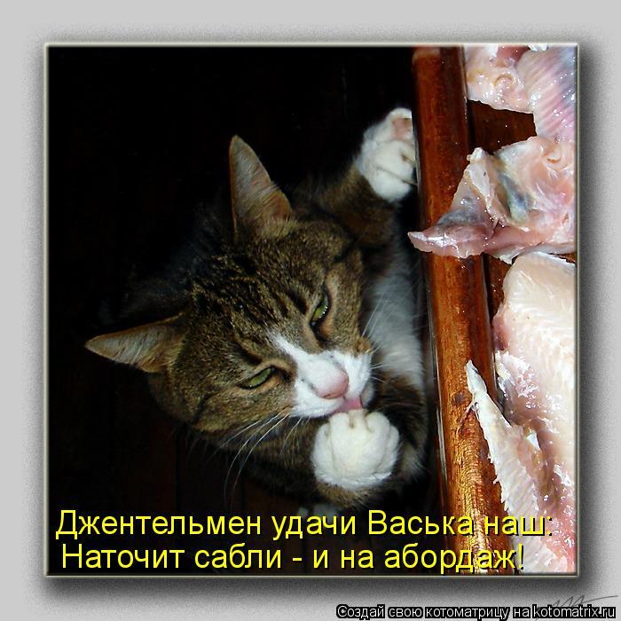 Котоматрица: Джентельмен удачи Васька наш: Наточит сабли - и на абордаж!