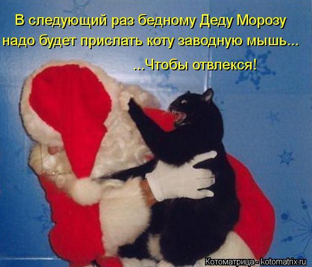 Котоматрица: В следующий раз бедному Деду Морозу надо будет прислать коту заводную мышь... ...Чтобы отвлекся!
