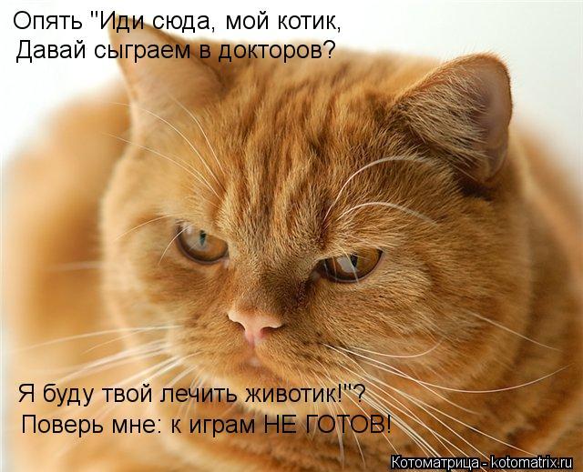 """Котоматрица: Опять """"Иди сюда, мой котик, Давай сыграем в докторов? Я буду твой лечить животик!""""? Поверь мне: к играм НЕ ГОТОВ!"""