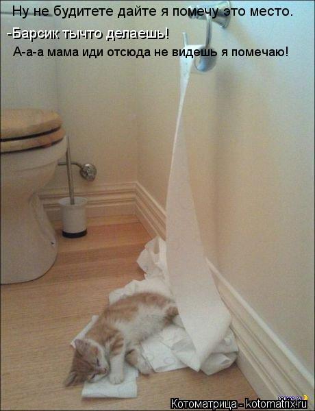к чему снится что мать ходит в туалет новым сезонам