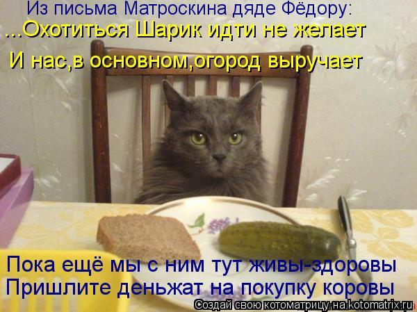 Котоматрица: Из письма Матроскина дяде Фёдору: ...Охотиться Шарик идти не желает И нас,в основном,огород выручает Пока ещё мы с ним тут живы-здоровы  Пришл