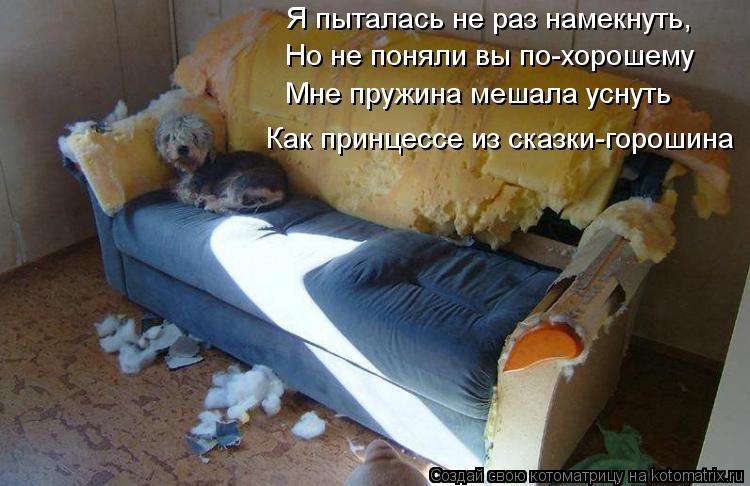 Котоматрица: Я пыталась не раз намекнуть, Но не поняли вы по-хорошему  Мне пружина мешала уснуть Как принцессе из сказки-горошина