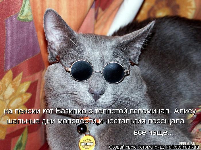 Котоматрица: на пенсии кот Базилио с теплотой вспоминал  Алису шальные дни молодости и ностальгия посещала  все чаще....