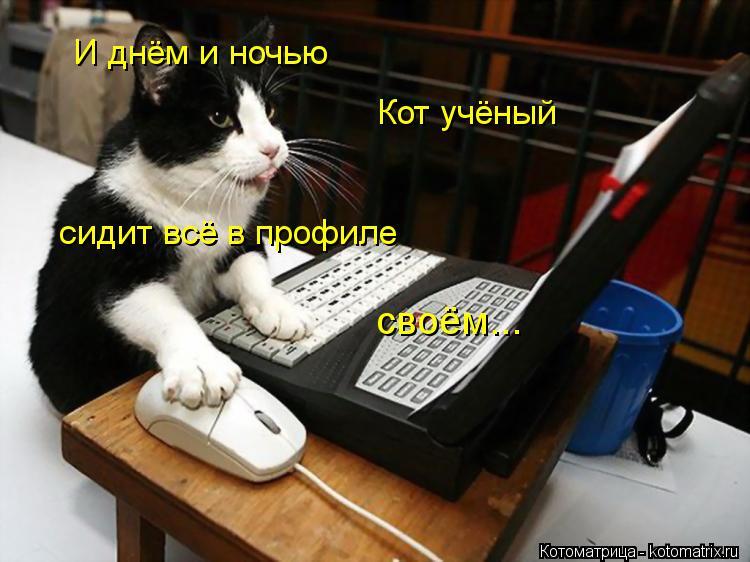 http://kotomatrix.ru/images/lolz/2013/05/24/kotomatritsa_XL.jpg