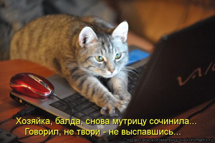 Котоматрица: Хозяйка, балда, снова мутрицу сочинила... Говорил, не твори - не выспавшись...