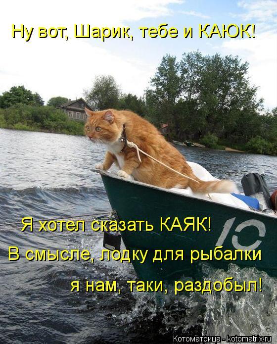 Котоматрица: Ну вот, Шарик, тебе и КАЮК! Я хотел сказать КАЯК! В смысле, лодку для рыбалки я нам, таки, раздобыл!