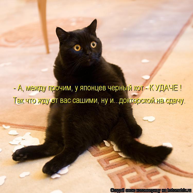 Котоматрица: - А, между прочим, у японцев черный кот - К УДАЧЕ ! Так что жду от вас сашими, ну и...докторской на сдачу.