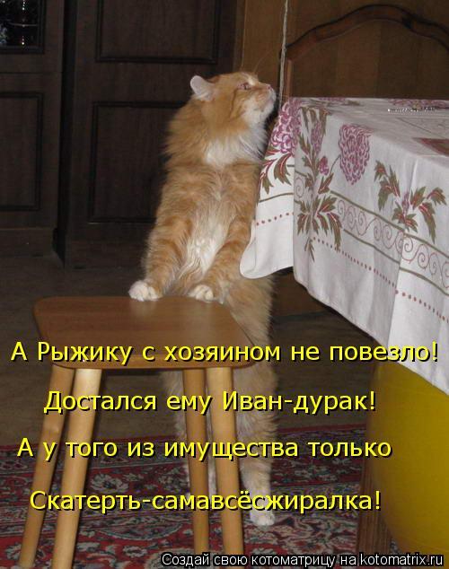Котоматрица: А Рыжику с хозяином не повезло! Достался ему Иван-дурак! А у того из имущества только  Скатерть-самавсёсжиралка!