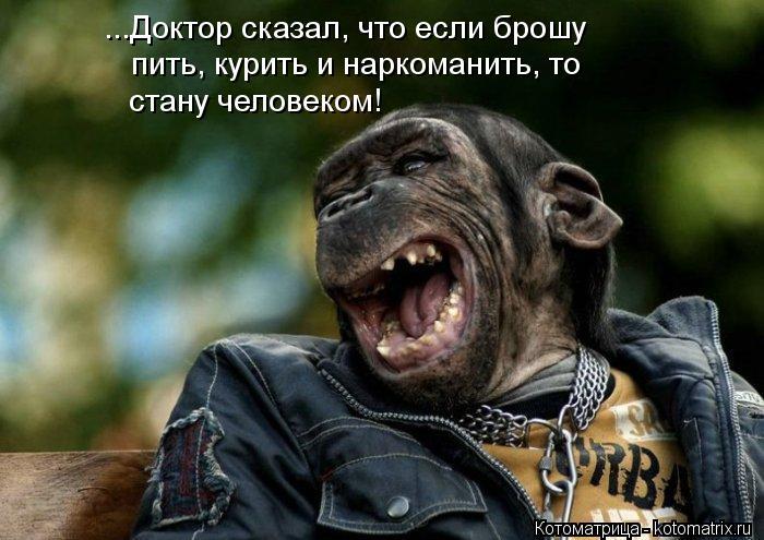 Котоматрица: ...Доктор сказал, что если брошу пить, курить и наркоманить, то стану человеком!