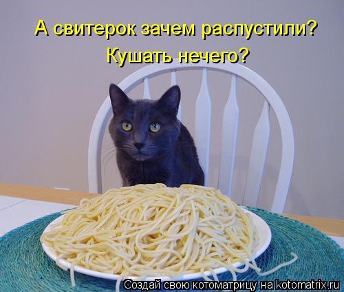 Котоматрица: Кушать нечего? А свитерок зачем распустили?