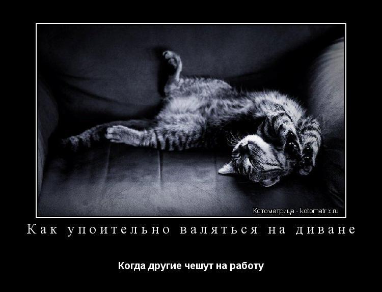 Котоматрица: Как упоительно валяться на диване Когда другие чешут на работу