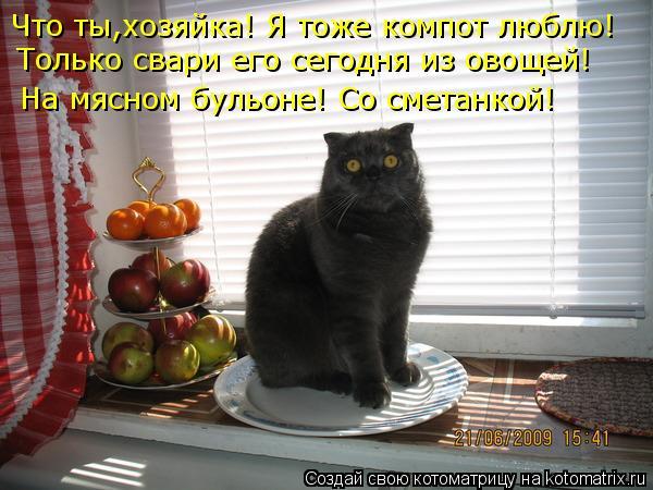 Котоматрица: Что ты,хозяйка! Я тоже компот люблю! Только свари его сегодня из овощей! На мясном бульоне! Со сметанкой!