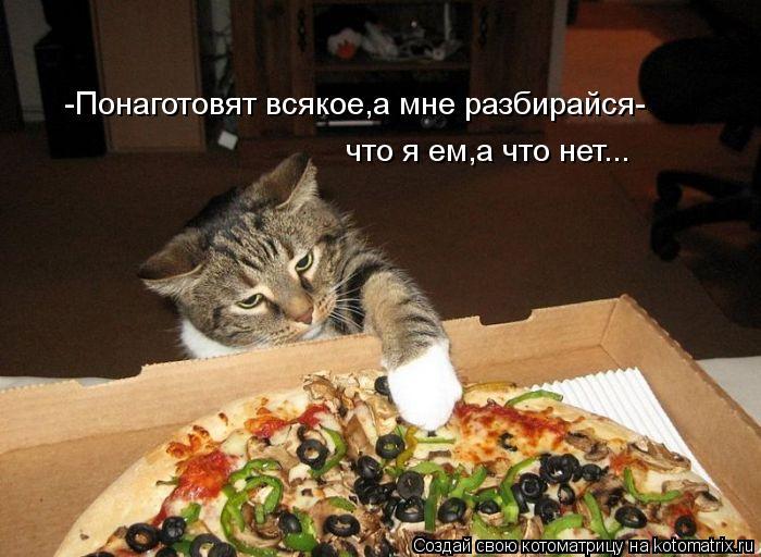 Котоматрица: -Понаготовят всякое,а мне разбирайся- что я ем,а что нет...