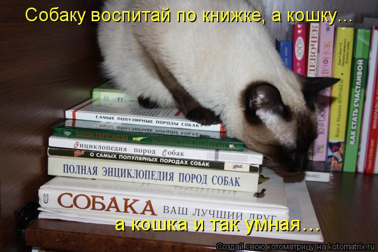 Котоматрица: Собаку воспитай по книжке, а кошку… а кошка и так умная…