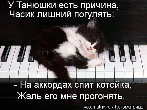 Котоматрица: У Танюшки есть причина, Часик лишний погулять: - На аккордах спит котейка, Жаль его мне прогонять.