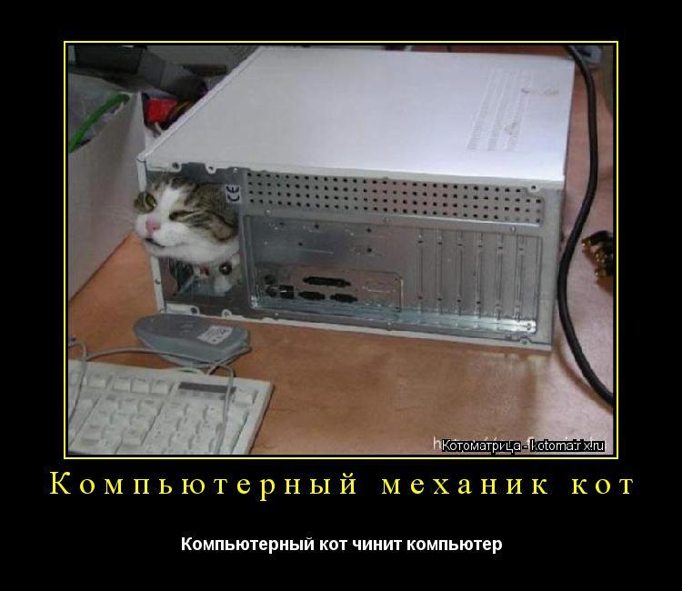 скачать игру про кота на компьютер через торрент бесплатно - фото 9