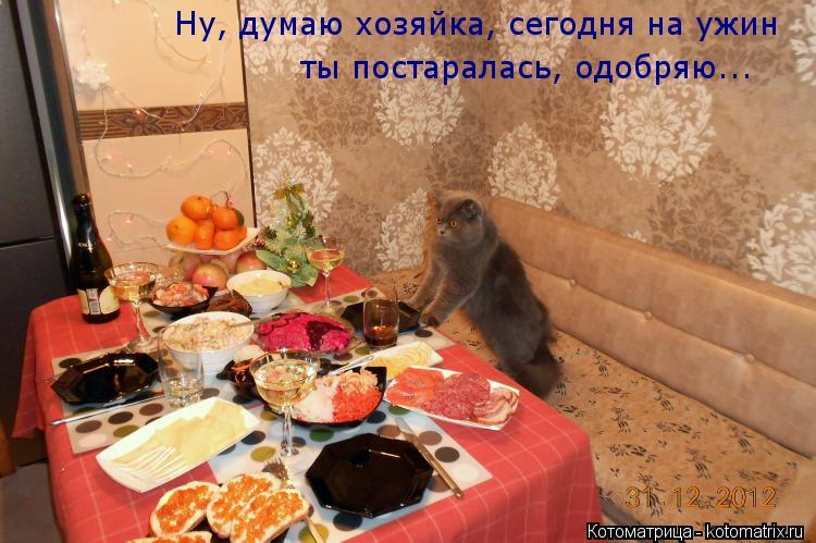 Котоматрица: Ну, думаю хозяйка, сегодня на ужин ты постаралась, одобряю...