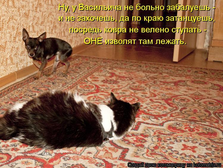 Котоматрица: Ну, у Васильича не больно забалуешь -  и не захочешь, да по краю затанцуешь, ОНЕ изволят там лежать. посредь ковра не велено ступать -