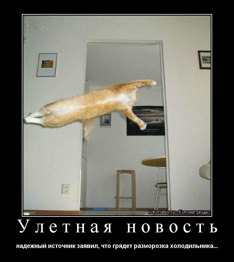 Котоматрица: Улетная новость надежный источник заявил, что грядет разморозка холодильника...