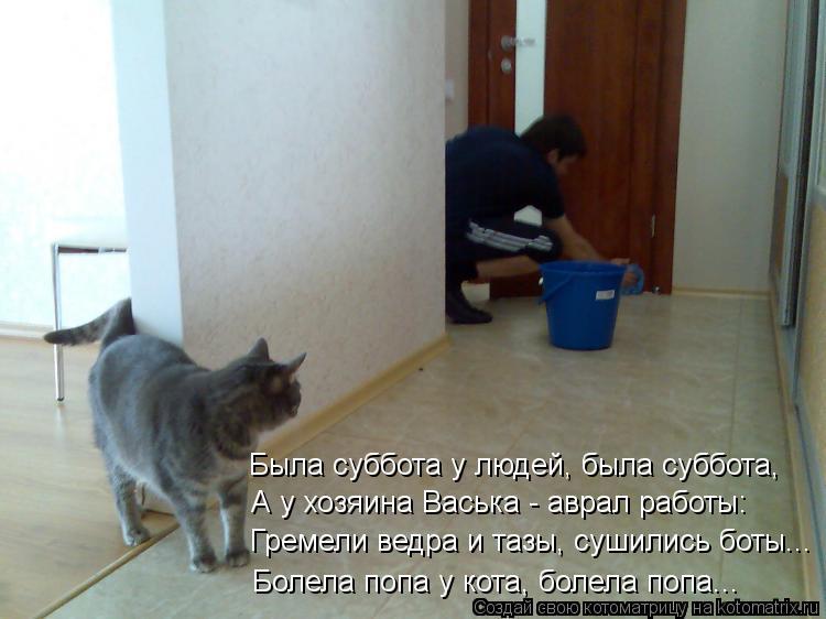 Котоматрица: Была суббота у людей, была суббота, А у хозяина Васька - аврал работы: Гремели ведра и тазы, сушились боты... Болела попа у кота, болела попа...