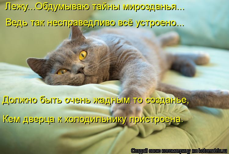 http://kotomatrix.ru/images/lolz/2013/06/07/kotomatritsa_74.jpg