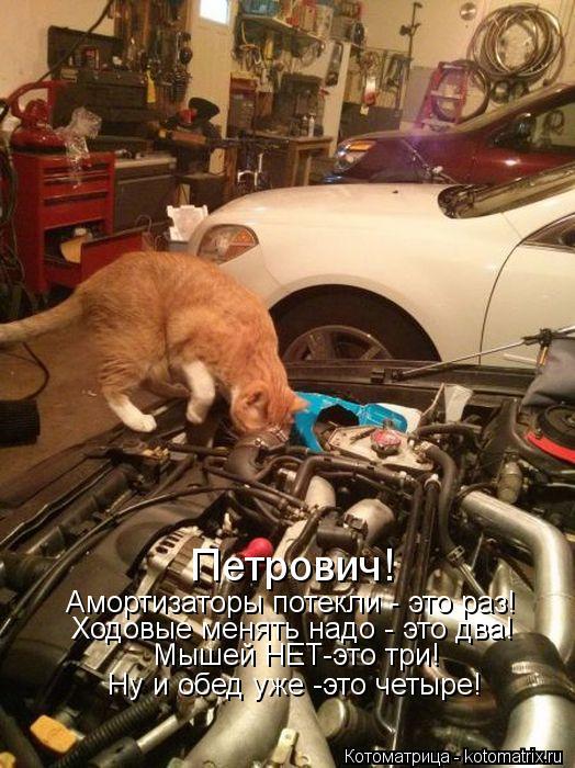 Котоматрица: Петрович! Амортизаторы потекли - это раз! Ходовые менять надо - это два! Мышей НЕТ-это три! Ну и обед уже -это четыре!