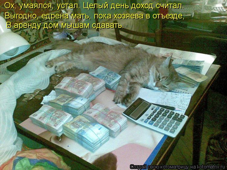 Котоматрица: Ох, умаялся, устал. Целый день доход считал. Выгодно, едрена мать, пока хозяева в отъезде,  В аренду дом мышам сдавать.