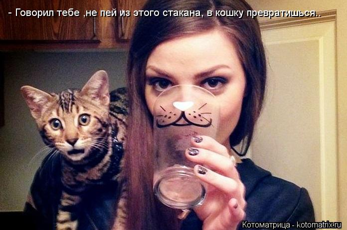 Котоматрица: - Говорил тебе ,не пей из этого стакана, в кошку превратишься..