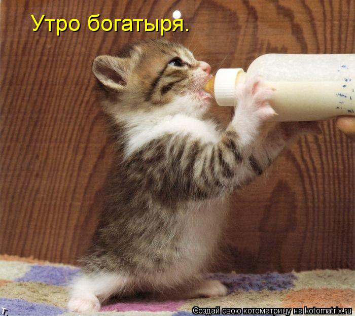 http://kotomatrix.ru/images/lolz/2013/06/10/kotomatritsa_Mm.jpg