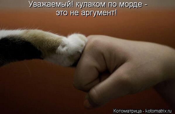 Котоматрица: Уважаемый! кулаком по морде -  это не аргумент!