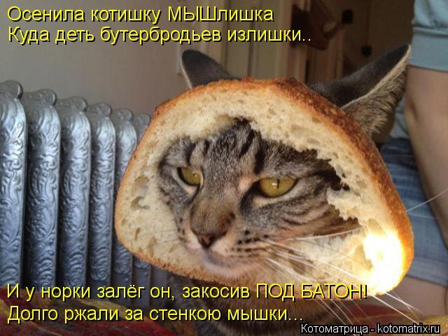 Котоматрица: Осенила котишку МЫШлишка Куда деть бутербродьев излишки.. Долго ржали за стенкою мышки... И у норки залёг он, закосив ПОД БАТОН!