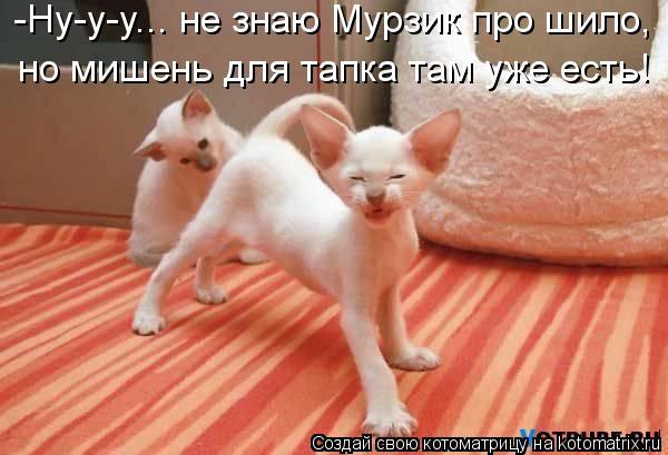 Котоматрица: -Ну-у-у... не знаю Мурзик про шило, но мишень для тапка там уже есть!