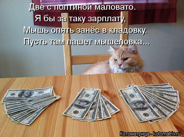 Котоматрица: Две с полтиной маловато.  Я бы за таку зарплату, Мышь опять занёс в кладовку. Пусть там пашет мышеловка...