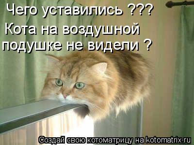 Котоматрица: Чего уставились ??? Кота на воздушной подушке не видели ?