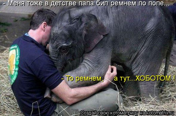 http://kotomatrix.ru/images/lolz/2013/06/13/kotomatritsa_aP.jpg