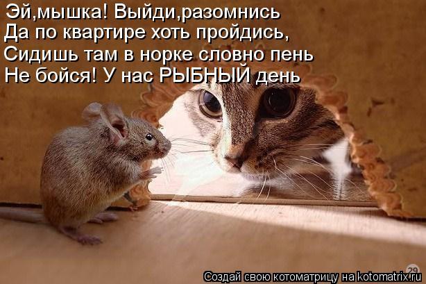 Котоматрица: Эй,мышка! Выйди,разомнись Да по квартире хоть пройдись, Сидишь там в норке словно пень Не бойся! У нас РЫБНЫЙ день