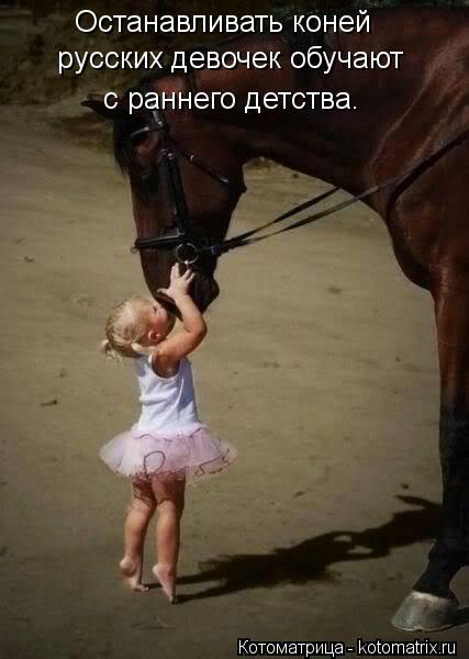 Котоматрица: Останавливать коней русских девочек обучают  с раннего детства.