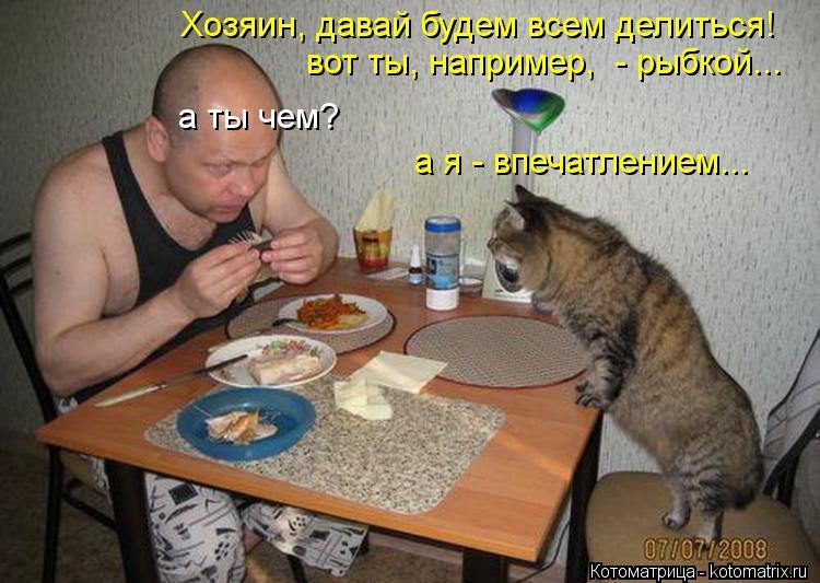 Котоматрица: а ты чем? Хозяин, давай будем всем делиться! вот ты, например,  - рыбкой... а я - впечатлением...