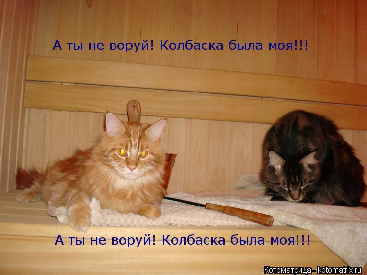 Котоматрица: А ты не воруй! Колбаска была моя!!! А ты не воруй! Колбаска была моя!!!