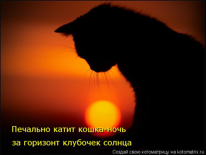 Котоматрица: Печально катит кошка-ночь  за горизонт клубочек солнца