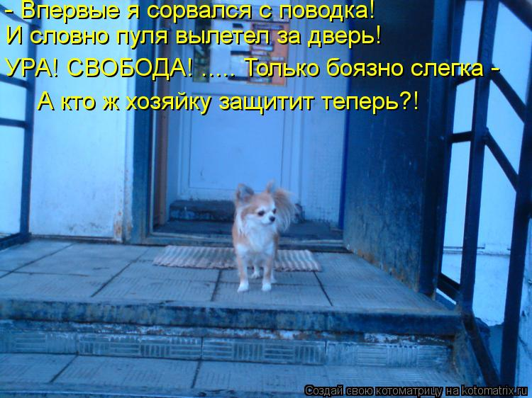 http://kotomatrix.ru/images/lolz/2013/06/20/kotomatritsa_DC.jpg