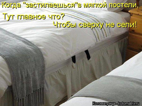 """Котоматрица: Когда """"застилаешься""""в мягкой постели, Тут главное что? Чтобы сверху не сели!"""